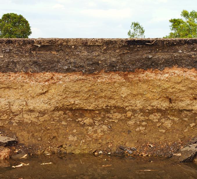 пучинистая почва